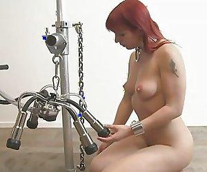 Cow milking Lola